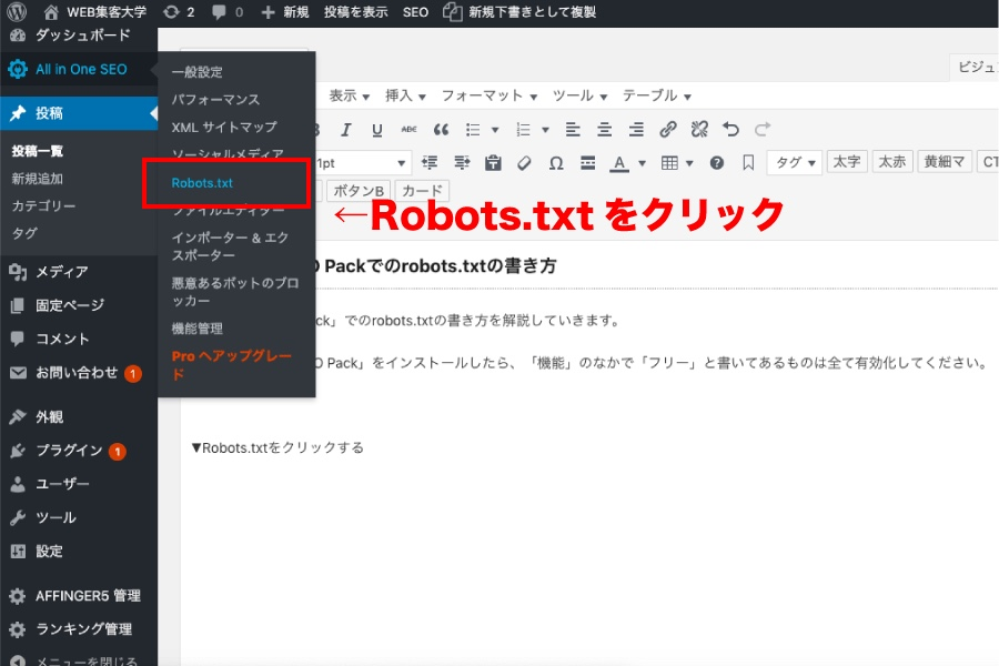 All in One SEO PackのRobots.txtを選択